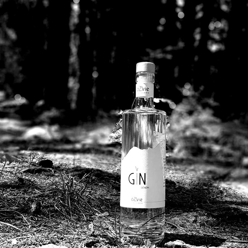 Les Gins